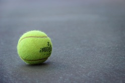 Tennis Ball Resting on the Court