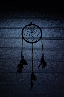 Dream Catcher Hanging in the Moonlight